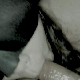 asian girlfriend oral sex